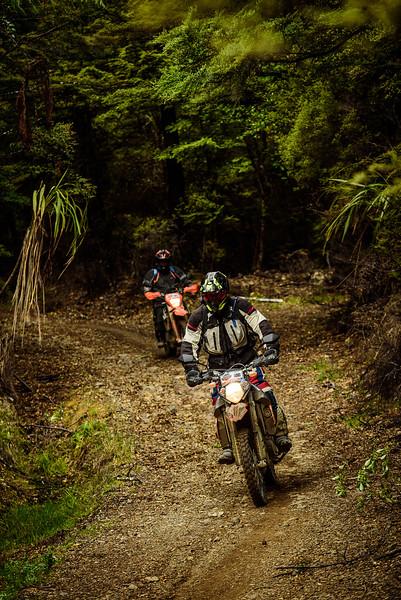 2019 KTM New Zealand Adventure Rallye (1334).jpg