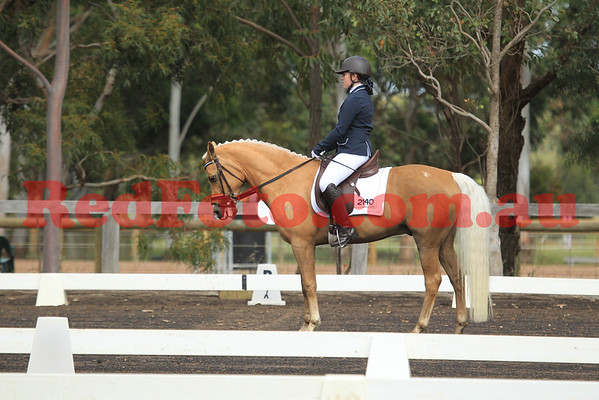 Swan Valley Dressage Association