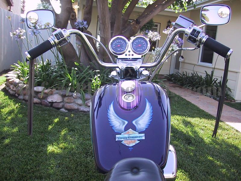 Rider's View.jpg