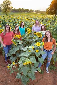 Squad Sunflowers