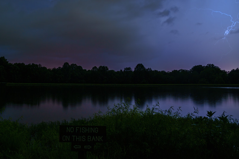 "I took these photos during Bernheim's Full ""Strawberry"" Moon Hike as an invited guest."