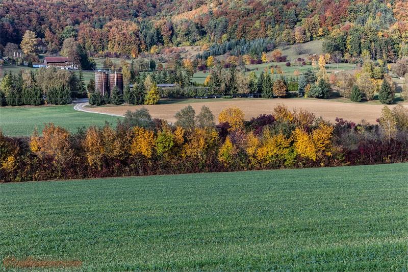 2016-10-22 Herbststimmung Aargau 0U5A1393.jpg