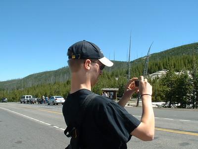 Yellowstone July 2010