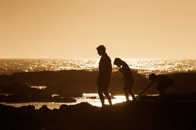 Victoria's Bass Coast, 2014