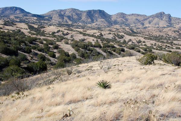 2009 Empire Ranch