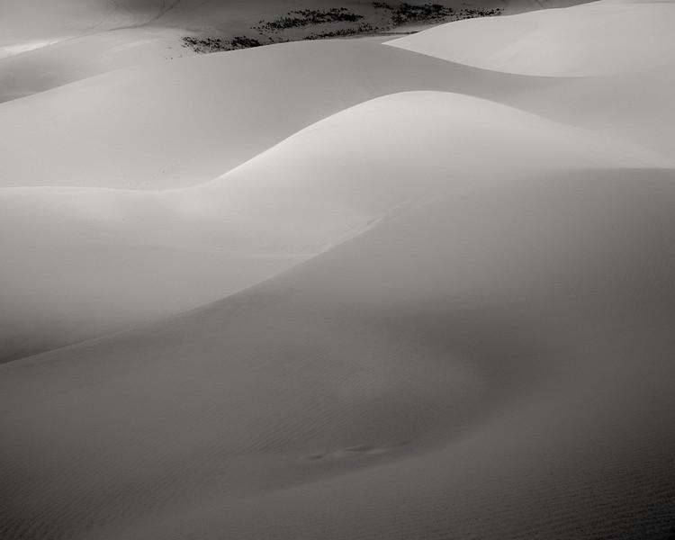 Wright.16x20L.Dune Dreams.jpg