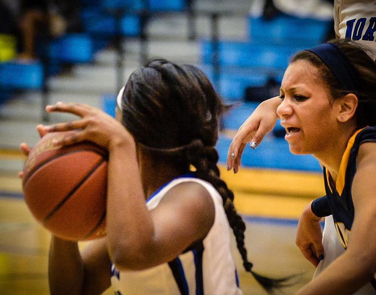 Basketball Girls Varsity vs  Lamar 01-21-14-23