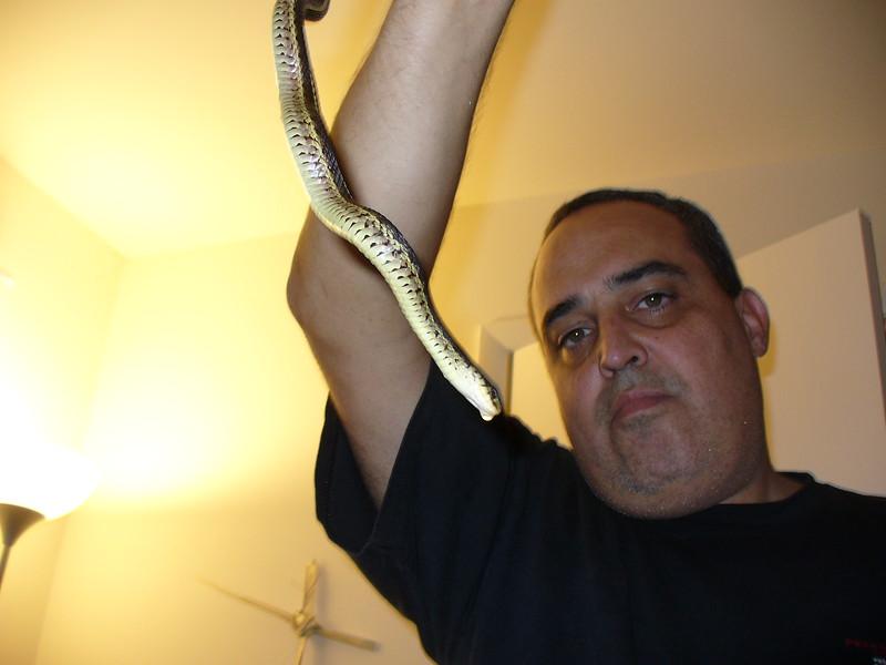 Snake 003.JPG