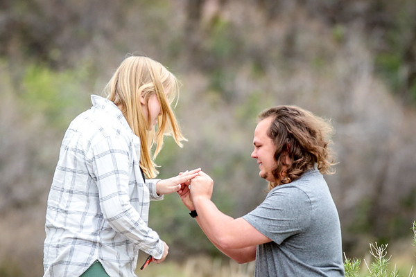 Covey + Courtney Proposal