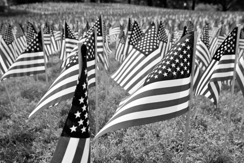 Memorial Day in the Common