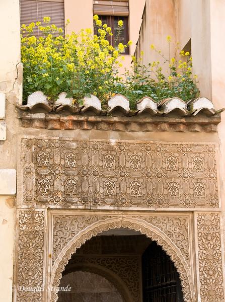 Fri 3/11 at La Alhambra in Grenada: Rooftop flowers