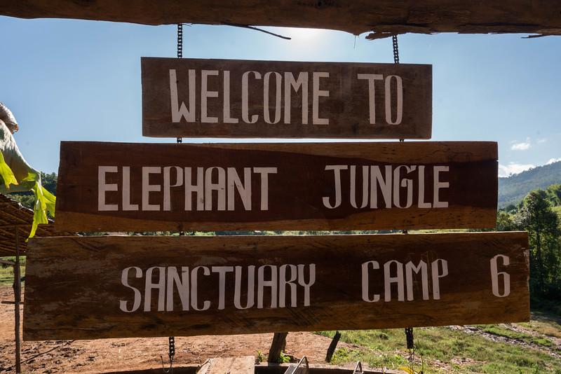 elephant-sanctuary-chiang-mai-2.jpg