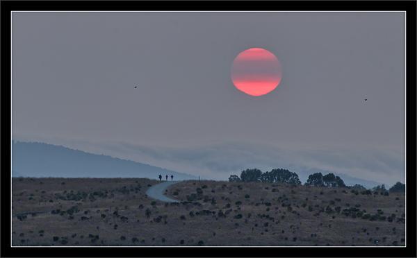 Sunset Through Wildfire Smoke