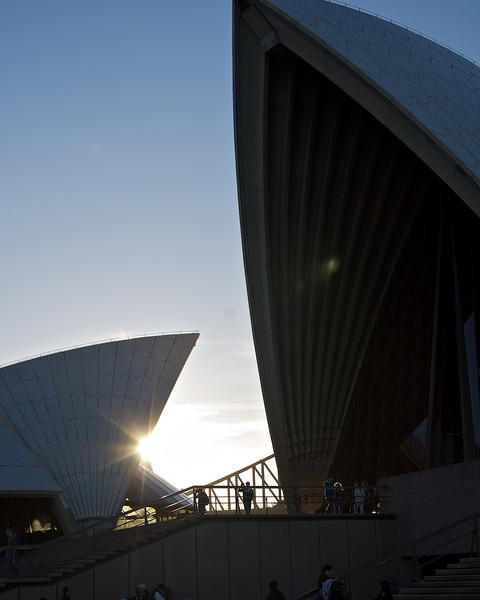2011-07-12_Sydney-Market_Copyright_David_Brewster__130