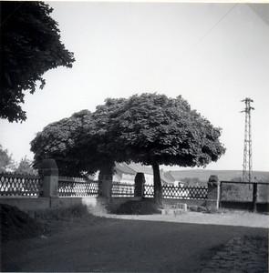 Koßmannschule damals