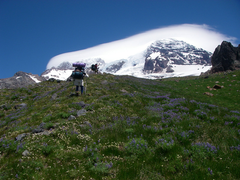 Walk along broad spine of Emerald Ridge