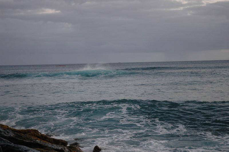Hawaii - Ala Moana Beach Sunset-174.JPG