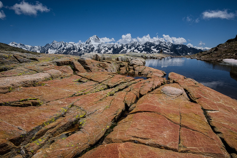 Loetschental July 2014 - Loetschental July 2014-15-July - 3800.jpg