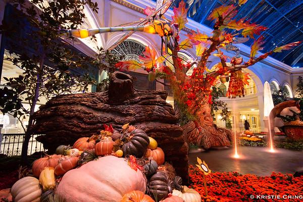 Las Vegas Bellagio Conservatory October 2018