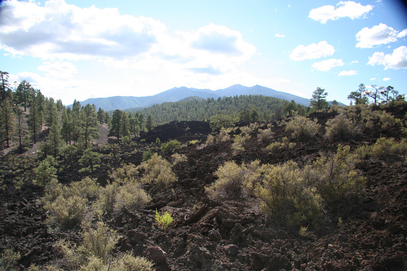 One of the many lava flows from Sunset Crater.