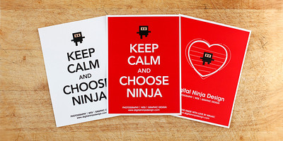 Keep Calm and Choose Ninja