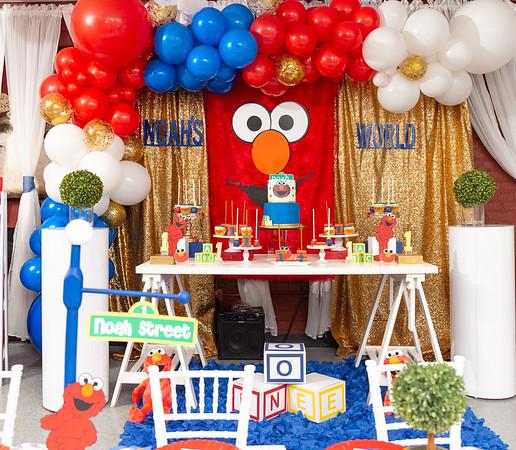 Noah's Elmo First Birthday