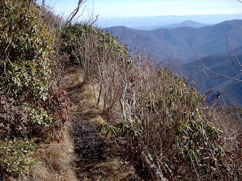 Cold Mountain Trail - 6,000'