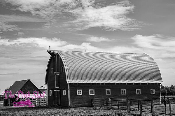 Malowany Farm
