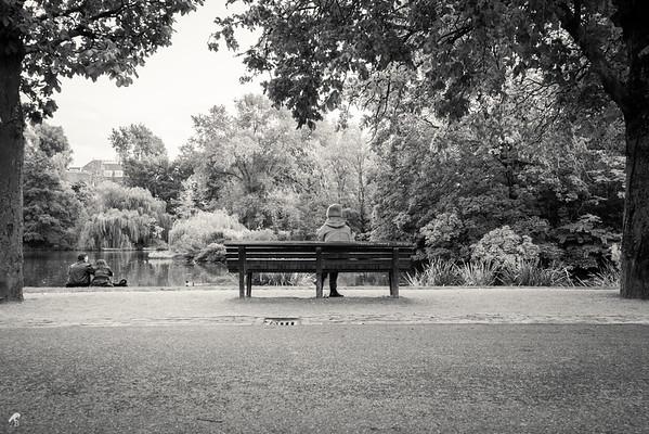 Vondelpark [2013]