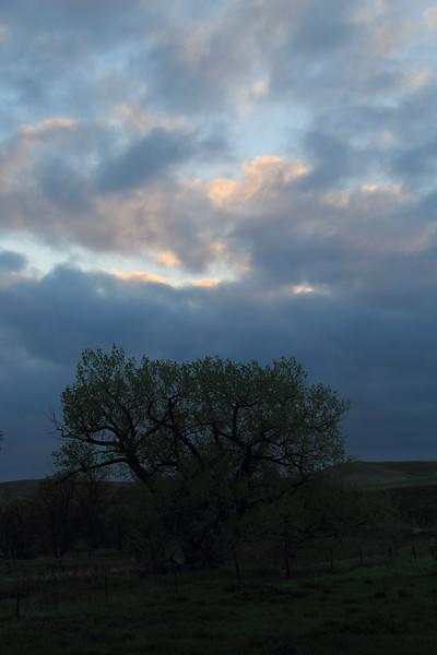 20140524-01-TriangleRanchBB-Sunrise.JPG