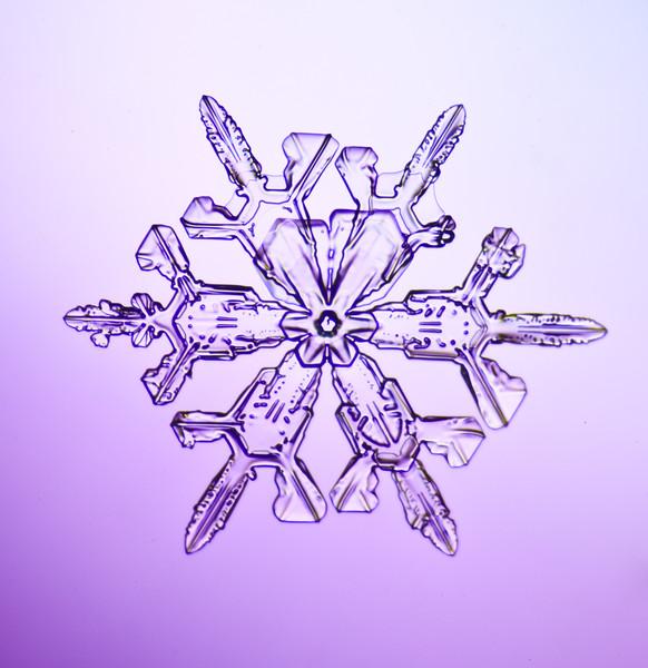 snowflake-3019-Edit.jpg