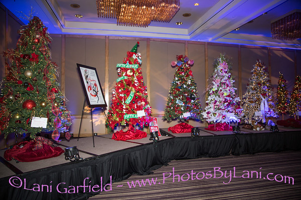 Act for MS 17th Annual Christmas Tree Lane 12/1/17