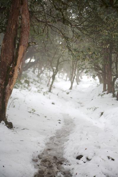 2007-02-26 at 15-39-04 - IMG_2890.jpg