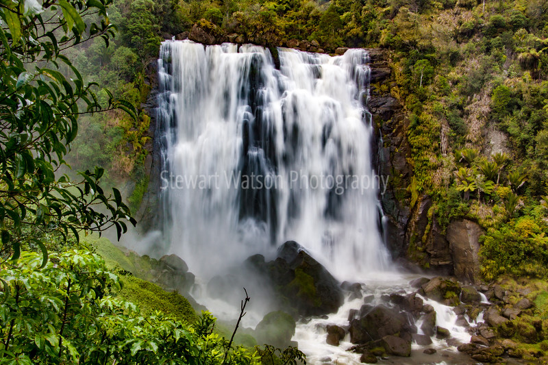 The beautiful and powerful Marokopa Falls deep in lush green native bush in New Zealand