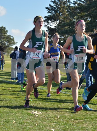 2013 State Cross Country 3A