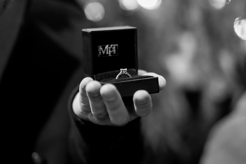 Brandon & Sonja Proposal-21.jpg