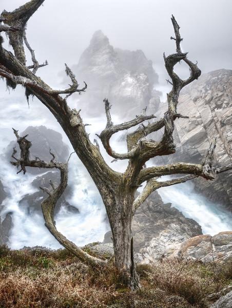 Pinnacle Point, Point Lobos, California
