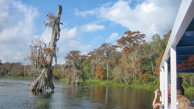 Boat Tour on the Wakulla River