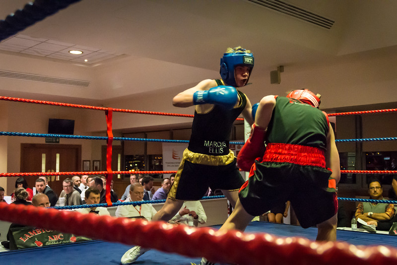 -Boxing Event March 5 2016Boxing Event March 5 2016-17090709.jpg