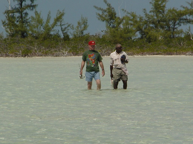 Looking for Bonefish