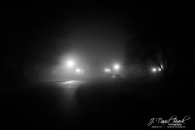 20200202 - Foggy Nights