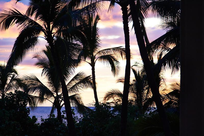 Hawaii-IMG_3214_.jpg