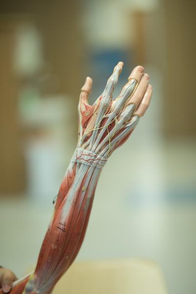 som-surgical-07-19-304.jpg