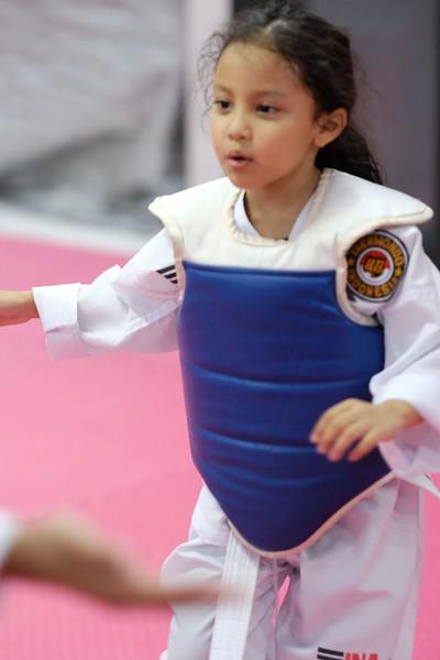 INA Taekwondo Academy 181016 186.jpg