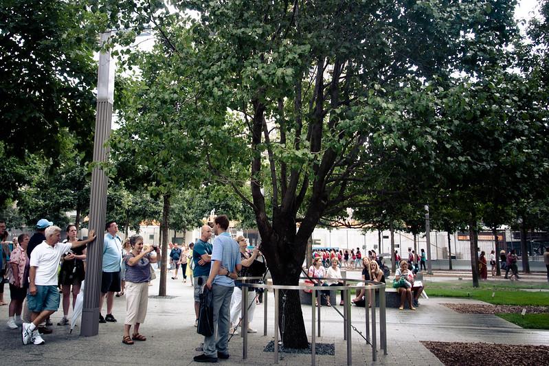 911 memorial tree.jpg