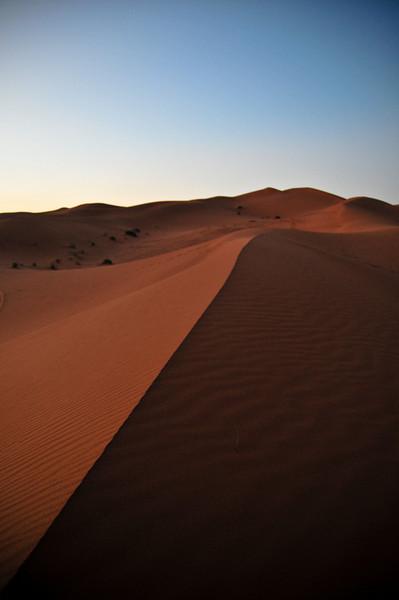 day4-SaharaCamp-28.jpg