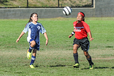 CSC Girls (GU9) vs DMCV Sharks 8-17-2013
