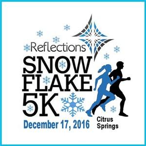 2016.12.17 Snowflake 5k