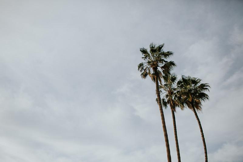 AVALON-COROLLA | April 2018 | Scottsdale-1028.jpg