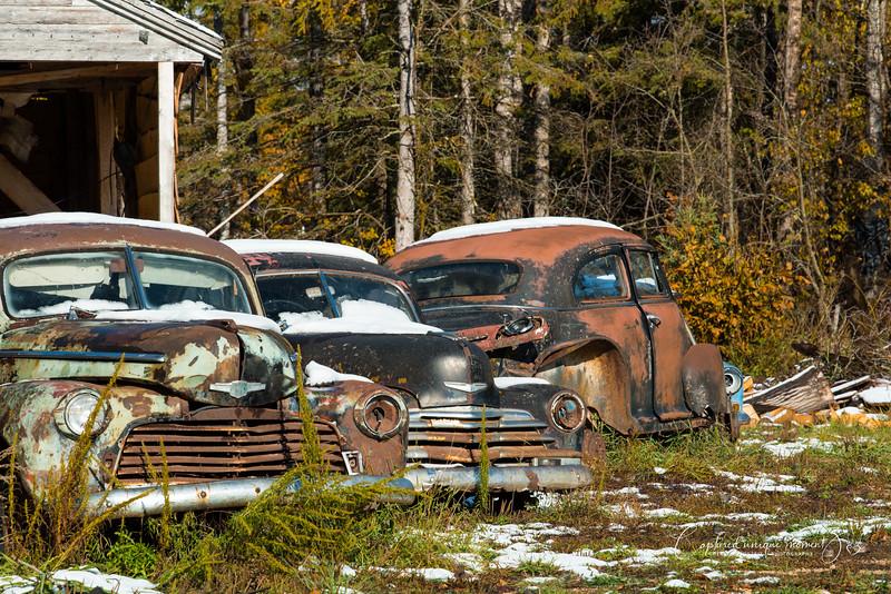 181006 Vintage Truck 0003.jpg